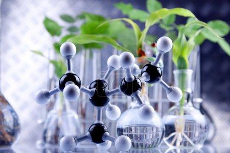 Green Seedling laboratory