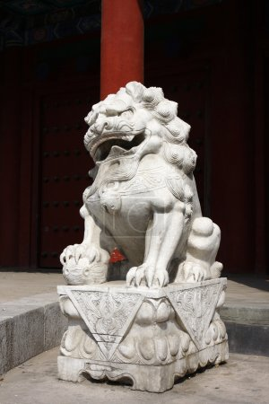 Stone lion sculpture in china1