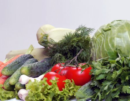 Photo for Set of different vegetables - Royalty Free Image