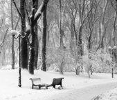 Shops in snow in winter park