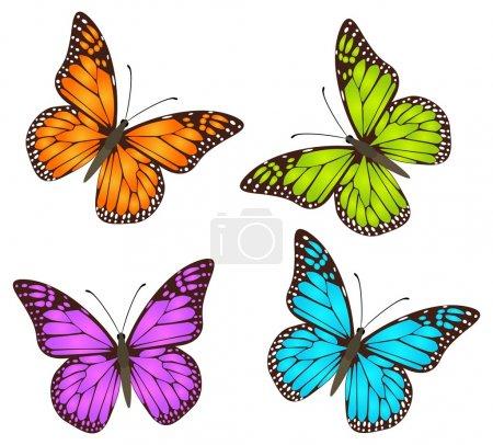 Illustration pour Papillons vecteurs, imagination multicolore sur Danaus Plexippus - Monarque. Isolé sur fond blanc . - image libre de droit