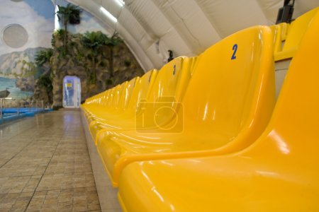 Rows of yellow seats