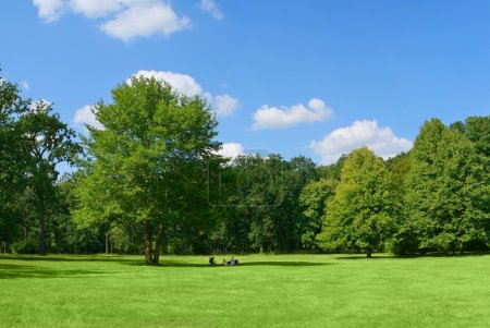 Photo for Family resting in park under the big tree - Royalty Free Image