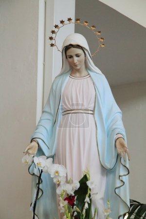 Madonna of Medjugorje