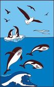 There are whale penguins and seagulls