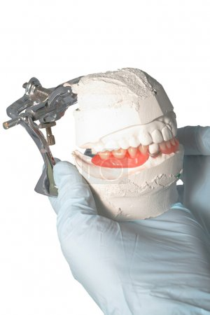Photo for Dental Lab Articulator with dental prosthesis - Royalty Free Image