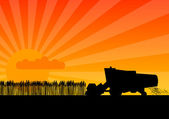 Black silhouette of combine under the sunset
