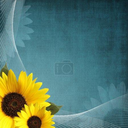 Photo pour Couverture de l'album bleu avec tournesol et ornement - image libre de droit
