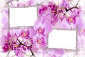 deux cadres de bambou aux orchidées