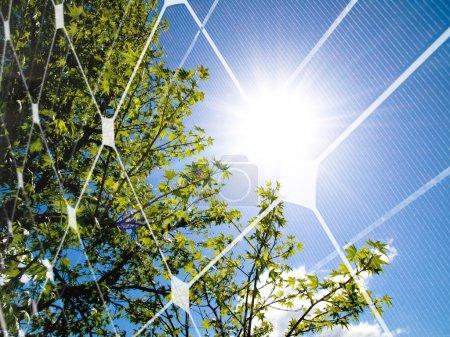 Foto de Árbol en primavera contra el sol y panel fotovoltaico - Imagen libre de derechos