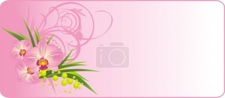 Illustration for Bouquet of orchids. Summer composition. Vector illustration - Royalty Free Image
