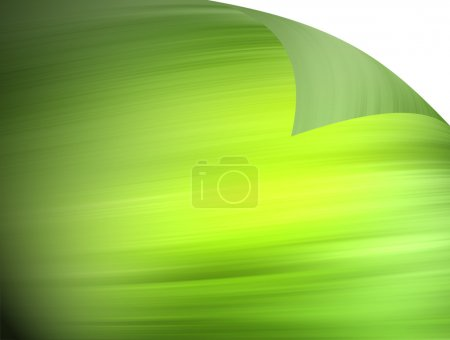Photo for Green paper on white background. Natural texture - Royalty Free Image