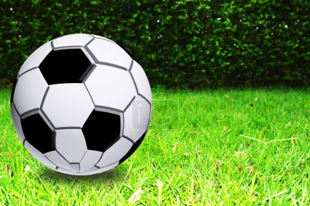 Photo for Soccer ball on green grass. Sport Image - Royalty Free Image
