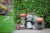 Garden thanksgiving and halloween decoration