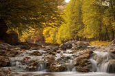 Waterfall flows among autumn trees