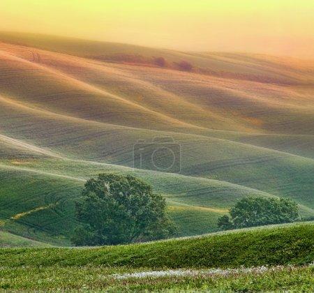 paysage de collines de la Toscane