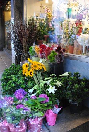 Street floral shop