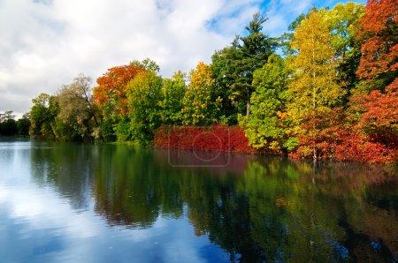 Photo pour Forteresse d'arbres automne coloré à l'avant de la rivière - image libre de droit