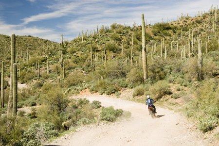 A dirt biker traveling through the Sonoran desert ...