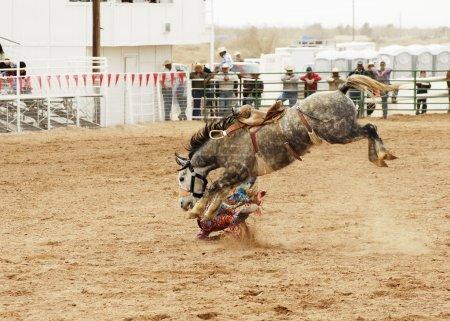 Saddle bronc 2