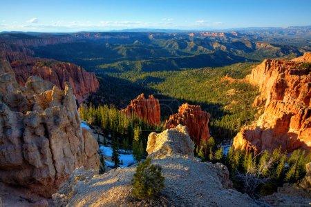 Photo pour Vue du parc national de Bryce Canyon depuis sa plus haute altitude - Rainbow Point - image libre de droit
