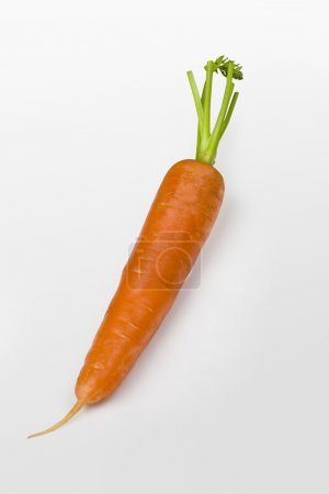 Photo for Nice fresh carrot isolated over white with clipping path - Royalty Free Image