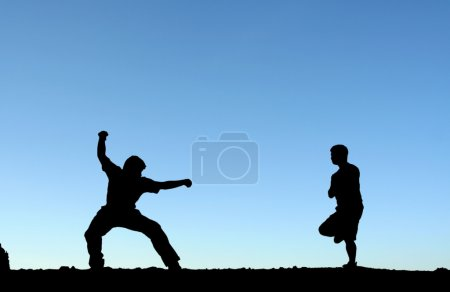 Photo for Two men practicing martial arts, in silhouette - Royalty Free Image