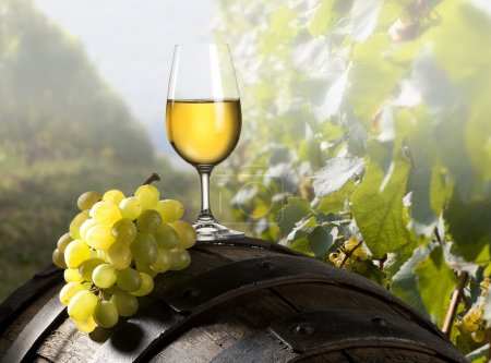 Photo for The glass of white wine and an old barrel and grapes - Royalty Free Image