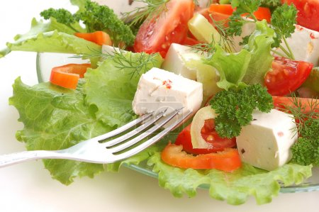 Photo for Vegetable salad with cheese,tomato, pepper,lettuce,parsley - Royalty Free Image