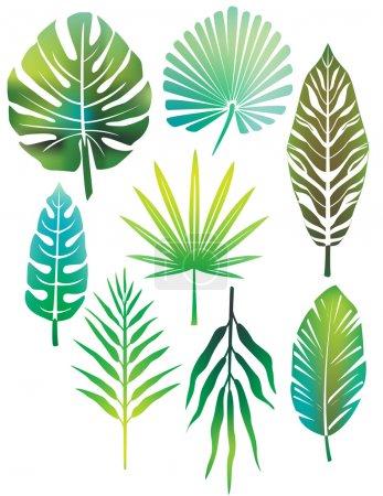 Illustration pour Feuilles vertes - image libre de droit