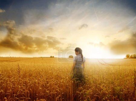 Photo pour Belle femme debout sur un champ de blé au coucher du soleil - image libre de droit