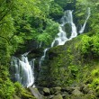 Torc Waterfall, Killarney National Park, County Ke...