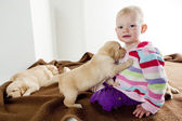 Toddler with puppies