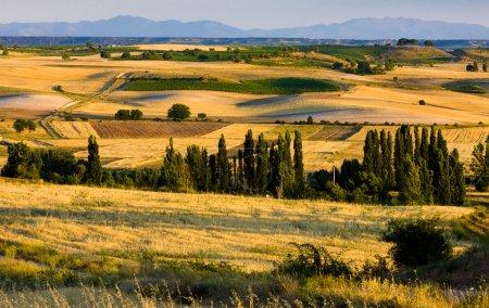 Photo pour Paysage près de Penaranda de Duero, Burgos Province, Castille et Léon, Espagne - image libre de droit