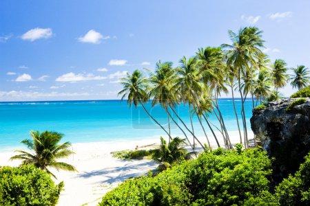 Photo pour Bottom Bay, Barbade, Caraïbes - image libre de droit