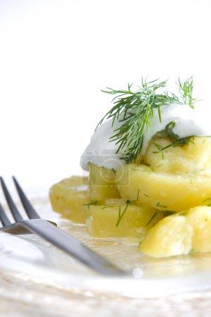 Photo pour Salade de pommes de terre allemande - image libre de droit