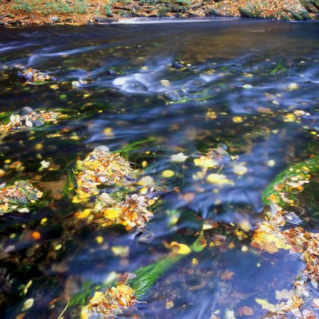 The Metuje river in autumn