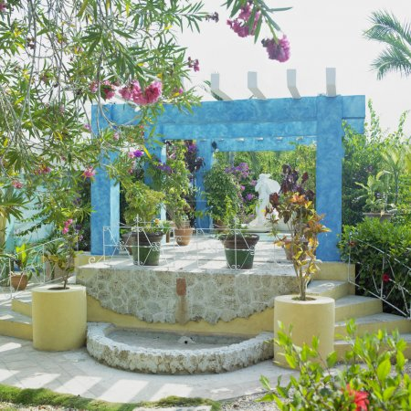 Garden, Cayo Coco, Ciego de