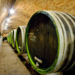 Wine cellar, Jaroslavice, Czech Republic...