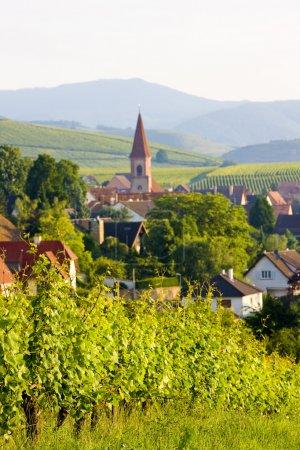 Wettolsheim, Alsace, France