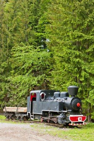 Steam locomotive, Museum of Kysuce village, Vychyl...