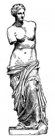 Venus de Milo Sketch