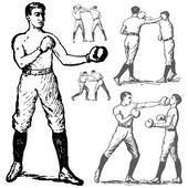 Vintage Boxing Illustrations