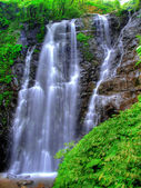 Wasserfall und Pflanzen