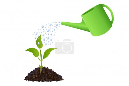 Green Young plant with watering can