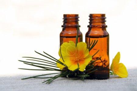 Photo pour Huile aromatique aromathérapie en bouteilles de verre avec le pin et la fleur - image libre de droit