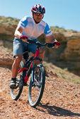 Mountain biker downhill on desert canyon