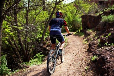 Biker on pathway