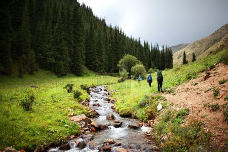 Photo for Group of backpackers walking in summer mountains - Royalty Free Image