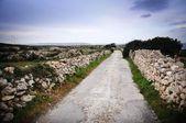 mur en pierre bordant une route de campagne étroite